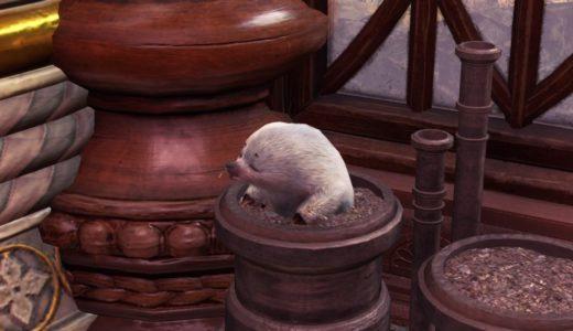 【MHWI】氷雪地帯のレア環境生物シルキーモギ―の出現場所【アイスボーン】
